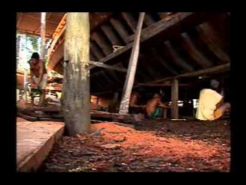 Ep 52-2 – Baía de Camamu, Itacaré e Ilhéus, Bahia
