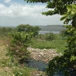 Mais lixo na lagoa Mundaú.