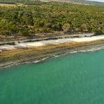 Até os anos 70, plantadores de cana arrancavam e queimavam os recifes de corais, para correão do ph do solo.