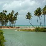As belezas naturais de Alagoas são muitas. A proteção a elas é praticamente nula.