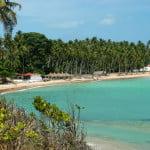 Mais uma linda praia no litoral norte de Alagoas. A cor do mar é um show a parte.