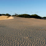 Ainda as dunas do Peba.