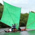Estupendas. As canoas sergipanas dão show de beleza plástica no rio Real.