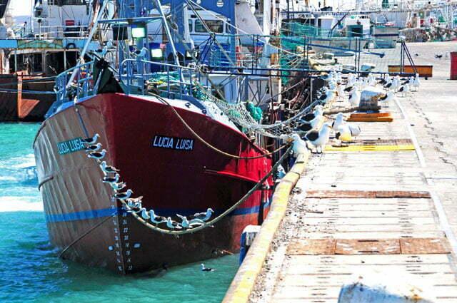 Pesqueiro em Puerto Deseado