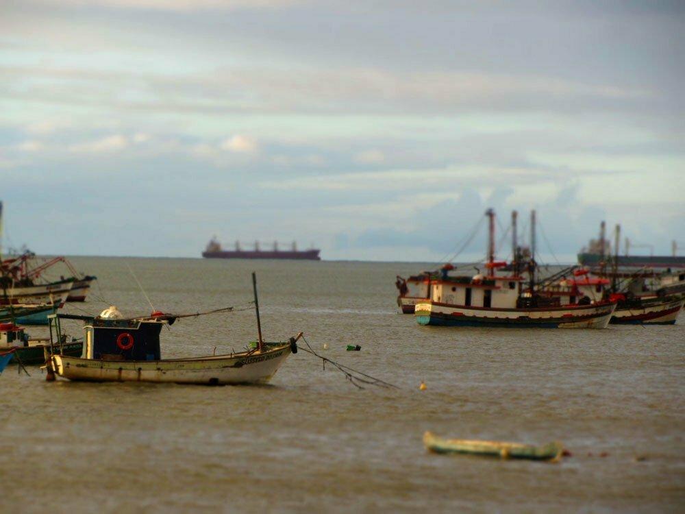petróleo e poluição