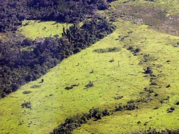 Cidades que mais desmatam, imagem de área desnatada na amazônia