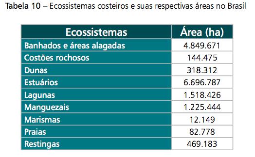 A importância dos manguezais.