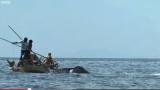 Pesca artesanal de baleias na Indonésia.
