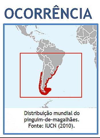 Pinguins-de-magalhães, ilustração mostrando mapa da ocorrência de Pinguins-de-magalhães