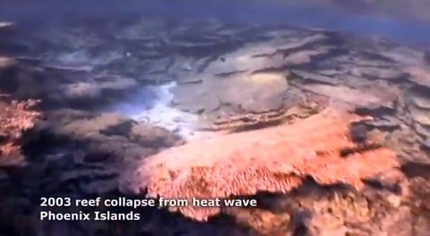 Acidificação dos Oceanos, Cena submarina de recifes de corais mortos em Phoenix Islands