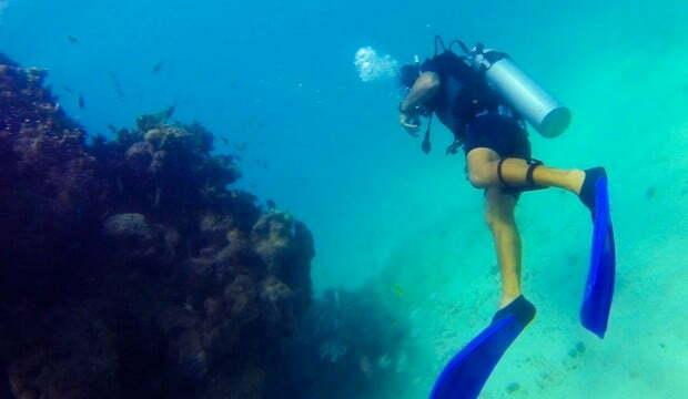 Aquário natural de corais convida ao mergulho no mar de Maragogi, AL