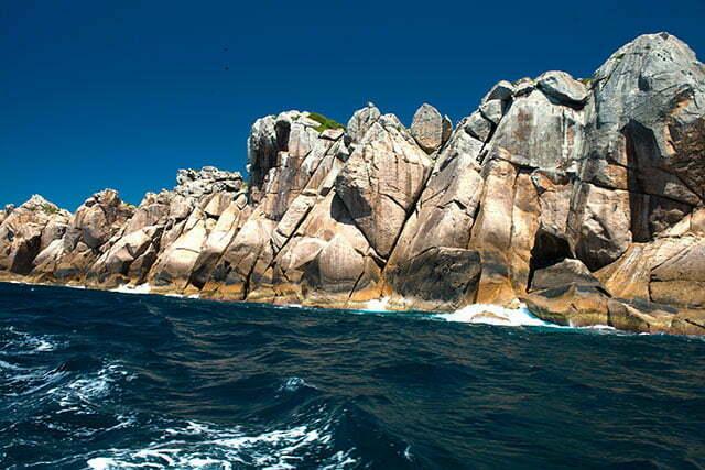 Reserva Biológica Marinha do Arvoredo em fotos.