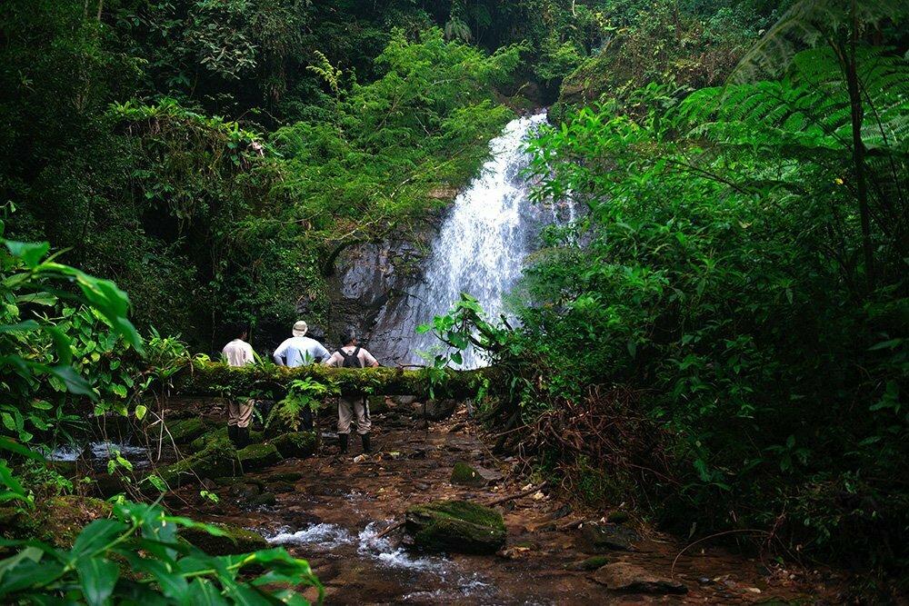 RPPN Salto Morato, Reserva Particular do Patrimônio Natural Salto Morato, image de cachoeira-com-mato-