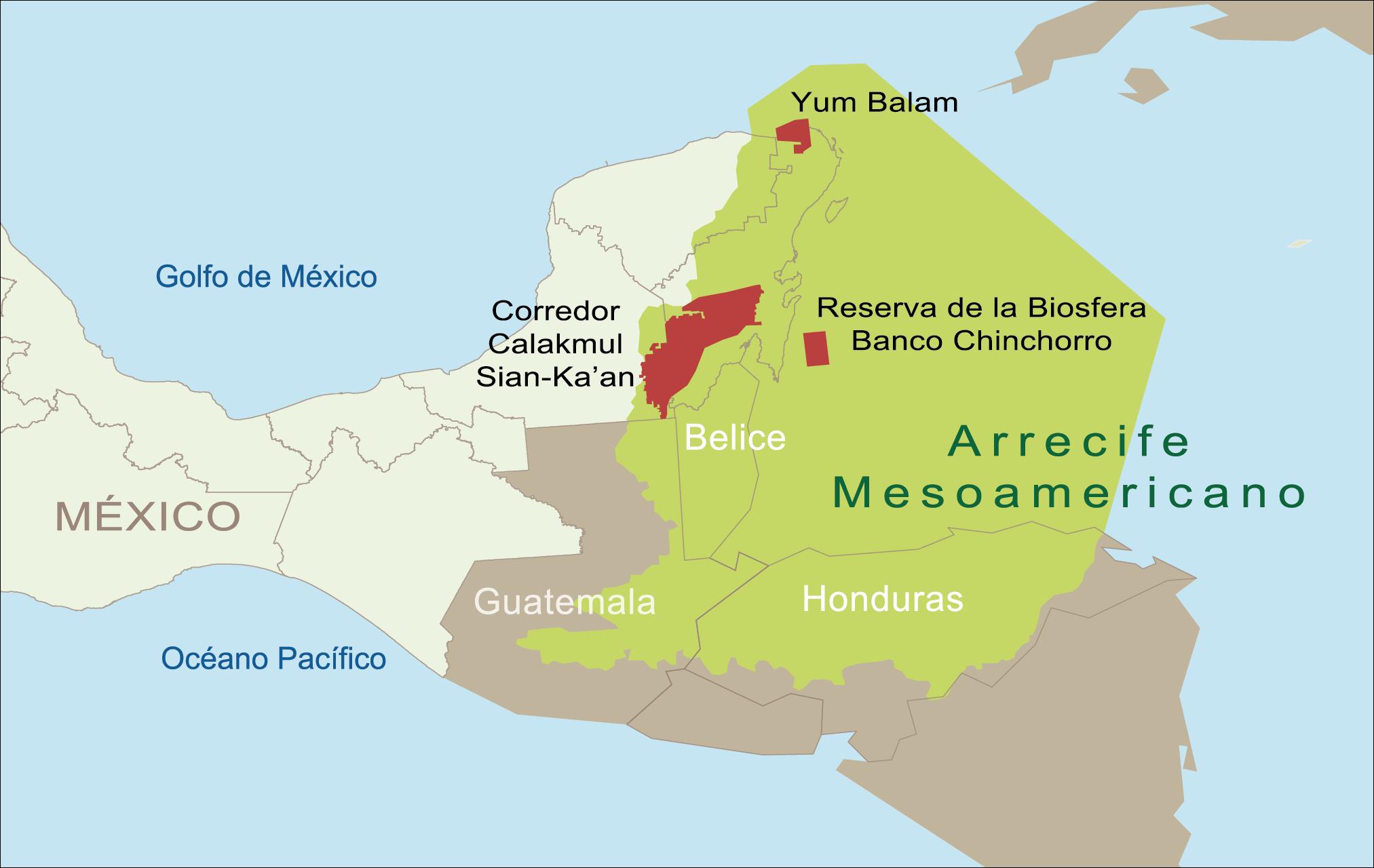 Fundo para o Meio Ambiente Mundial, imagem arrecife mesoamericano