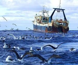 Portugal proíbe pesca de arrasto de fundo