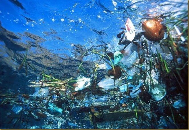 O caminho do plástico, imagem de plástico nos oceanos