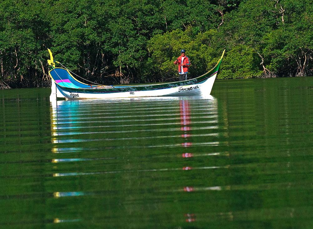 imagem de canoa de-bordadura no Parque Nacional do Superagui, Paraná