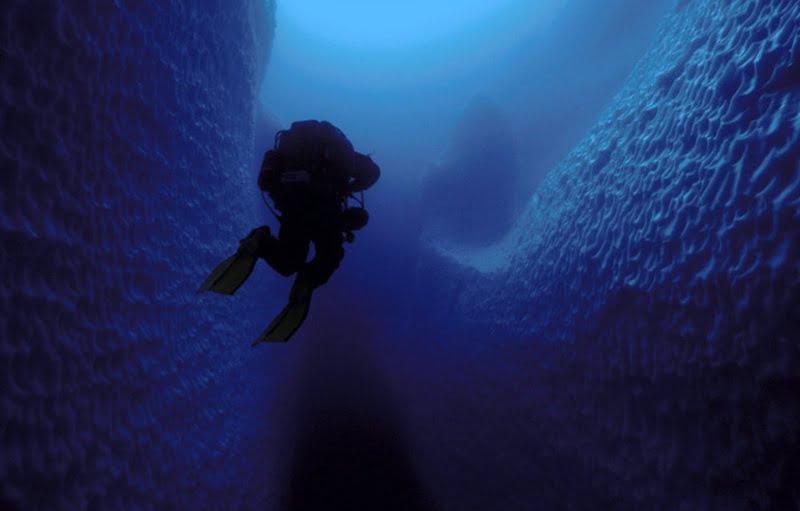Mergulho em iceberg, saiba como é , imagem de mergulho em iceberg