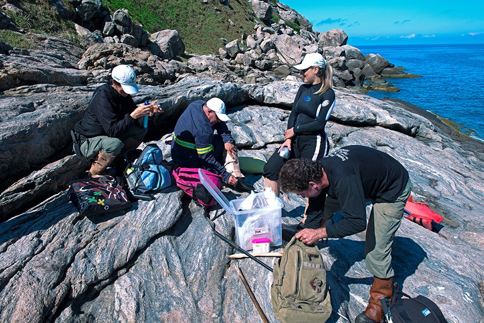 ilhas da Queimada Pequena e Queimada Grande, imagem da a-equipe-desembarca-arie ilhas da Queimada Pequena e Queimada Grande