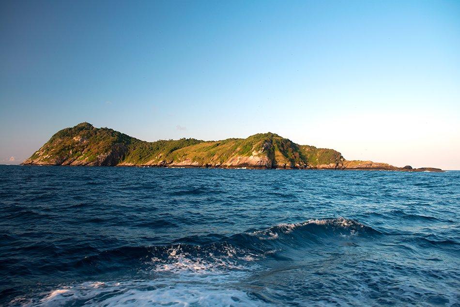 ilhas da Queimada Pequena e Queimada Grande, imagem da-ilha-da-Queimada-Grande-