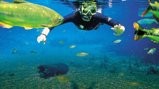 Diferença entre turismo de aventura, ecoturismo e turismo sustentável