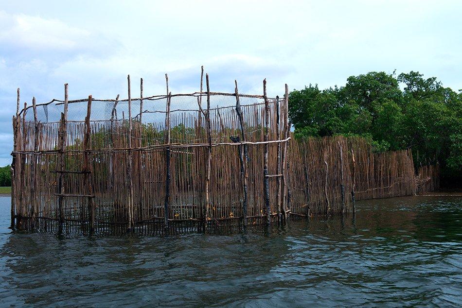 cerco-em cananeia apa cananeia iguape peruibe