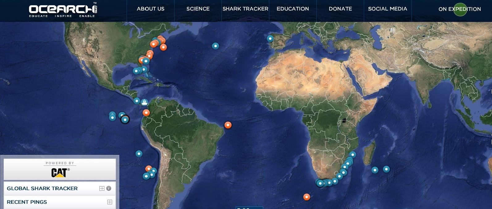 imagem de mapa mundi para Tubarões monitorados por satélite
