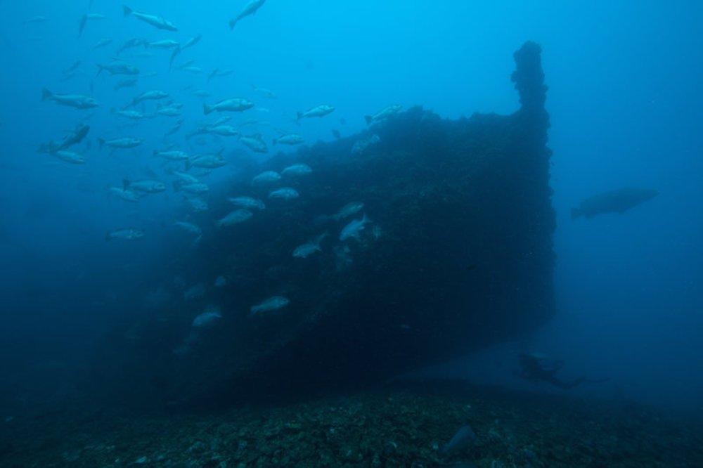 imagem naufrágio Yongala