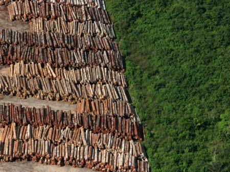 Degradação em áreas protegidas aumenta