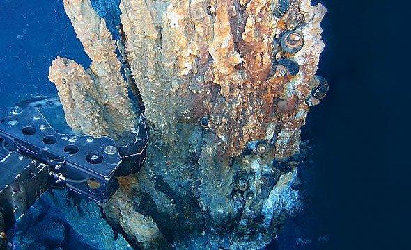 Recursos marinhos – algas calcárias