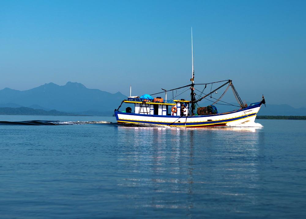 Recursos marinhos vivos: pesca, imagem de barco pesqueiro em Cananéia--