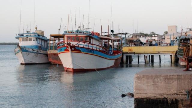Rastreamento vai garantir segurança para pescadores de lagosta