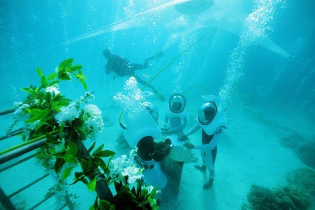 casamento embaixo da agua