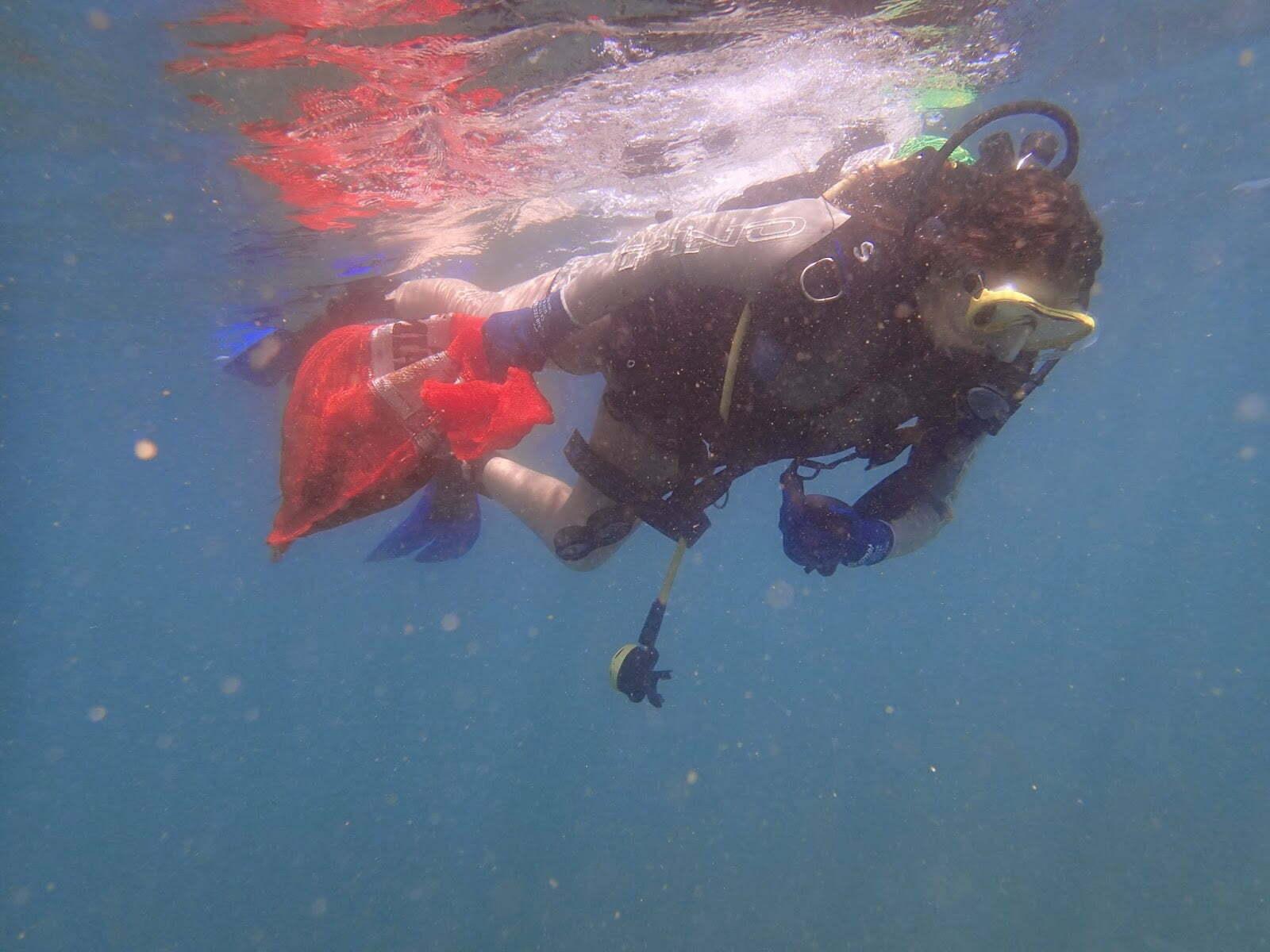 lixo do mar em Salvador, imagem de mergulhador com lixo marinho