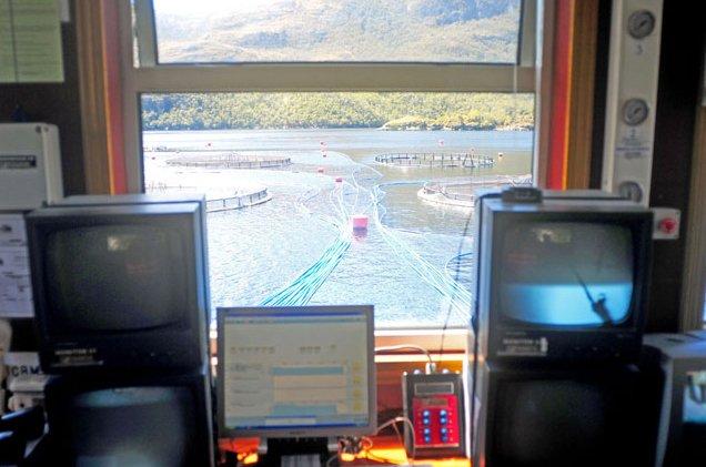 Criação de peixes em cativeiro, imagem de monitoramento-dos-tanques de criação de salmões
