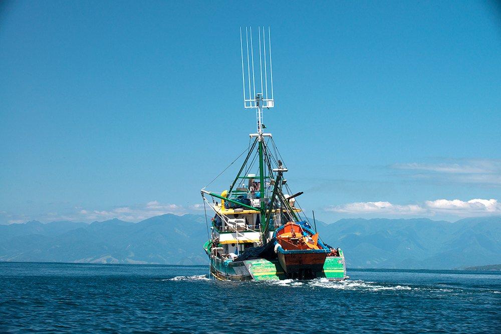 Criação de peixes em cativeiro, imagem de pesqueiro-em-angra-dos-reis