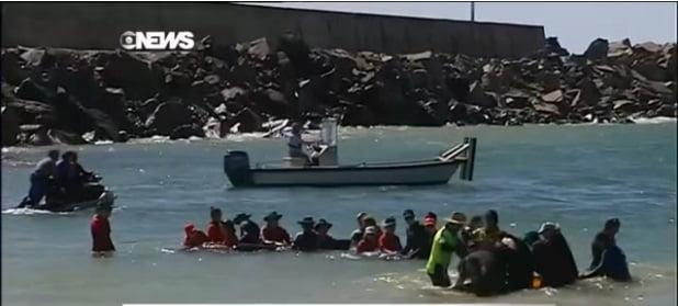 voluntários tentam salvar baleia na austrália 2