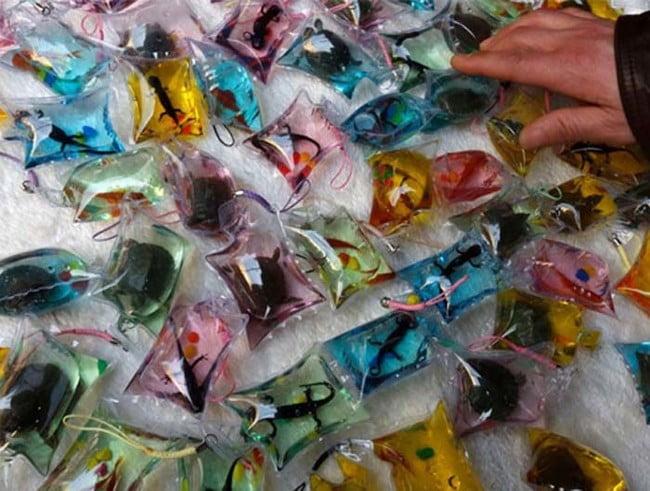 animais marinhos plastificados