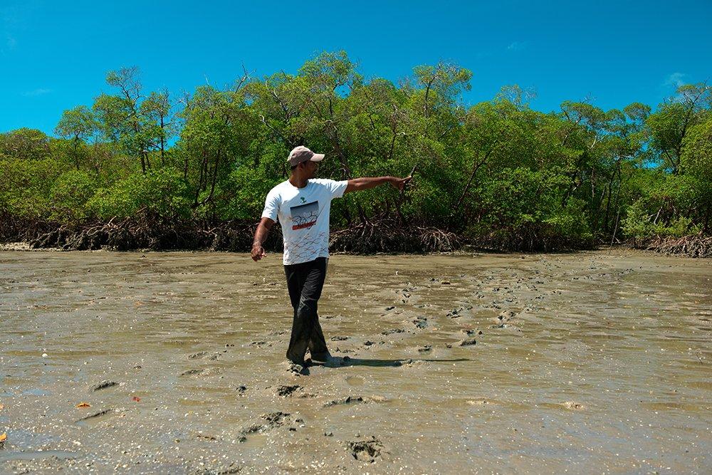 resex cassuruba, imagemd e manguezal