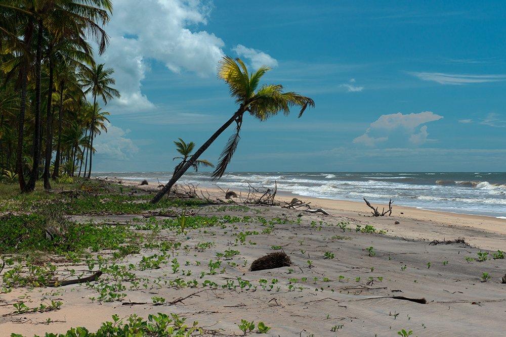 a-praia-Barra-Velha