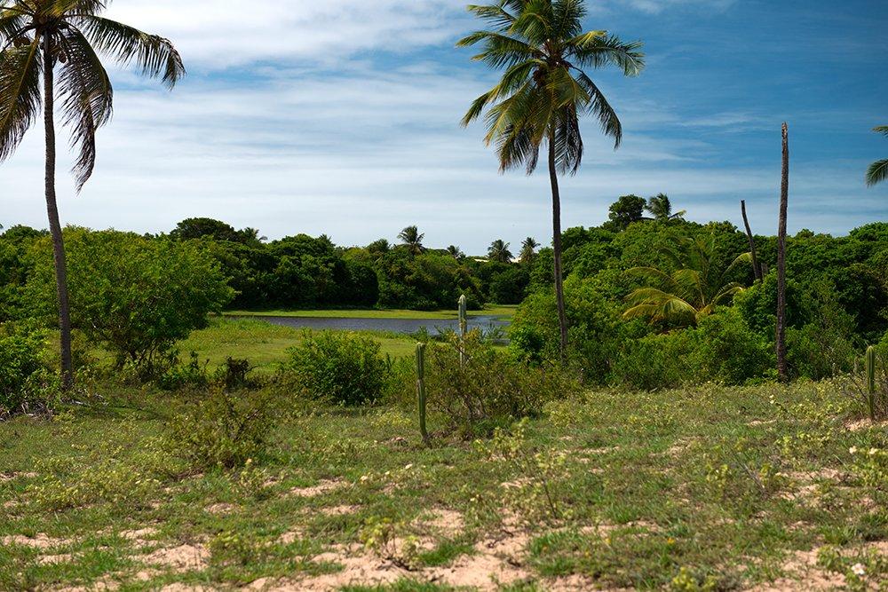 APA de Paiçabuçu, imagens da APA de Piaçabuçu