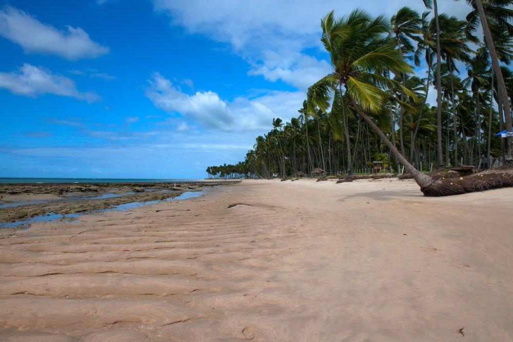 APA Costa dos Corais, imagem da Praia dos Carneiros