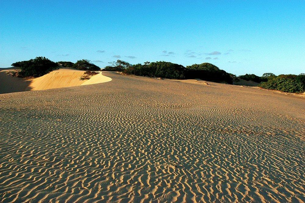 apa de piaçabuçu, imagem de dunas e restingas