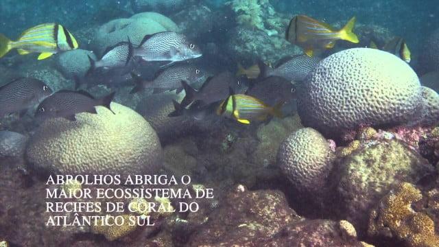 Reserva da Biosfera Marinha Abrolhos Trindade