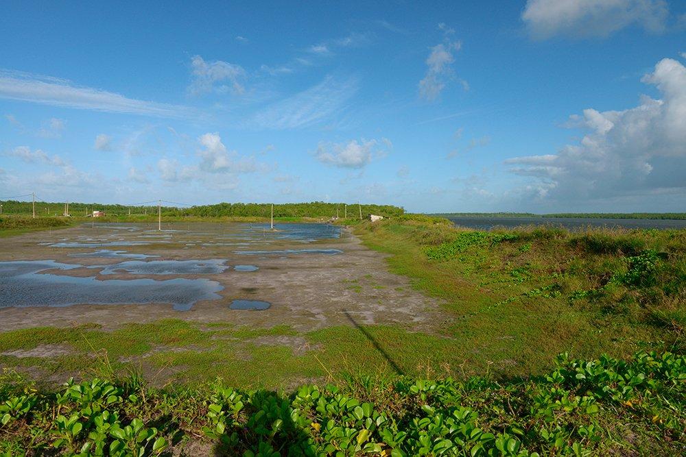 Árie e APA de Mamanguape, image de Tanques de criação de camarões ao lado do estuário
