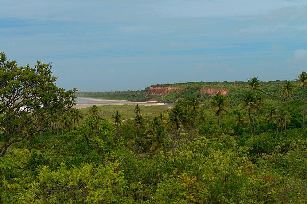 Árie e APA de Mamanguape, imagem da A foz do rio Miriri, limite sul da APA