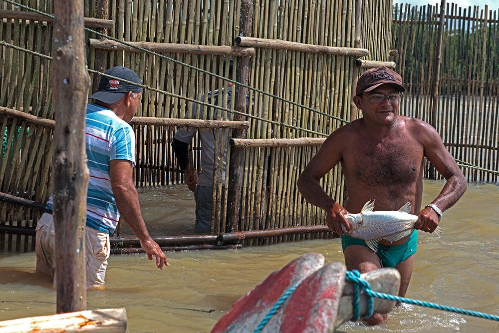 Resex Caeté Taperaçu, imagem de pescadores durante despesa do cerco