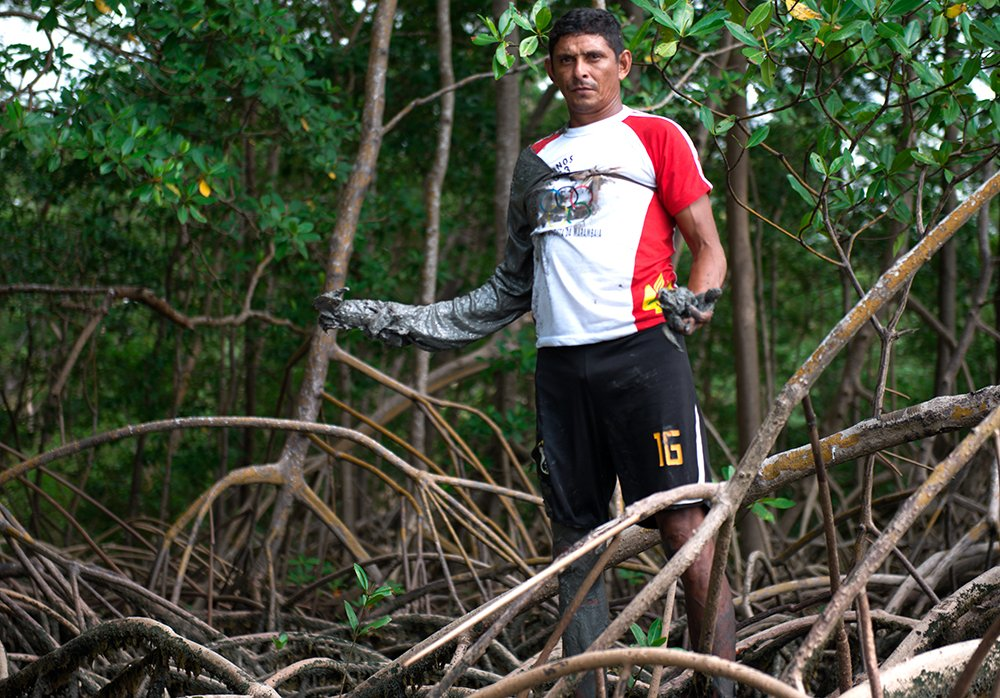 Resex Mãe Grande de Curuçá, imagem de Um catador no mangue