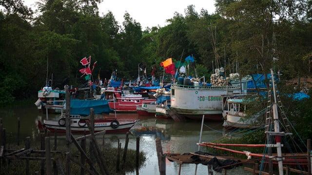 Resex Soure, Ilha do Marajó