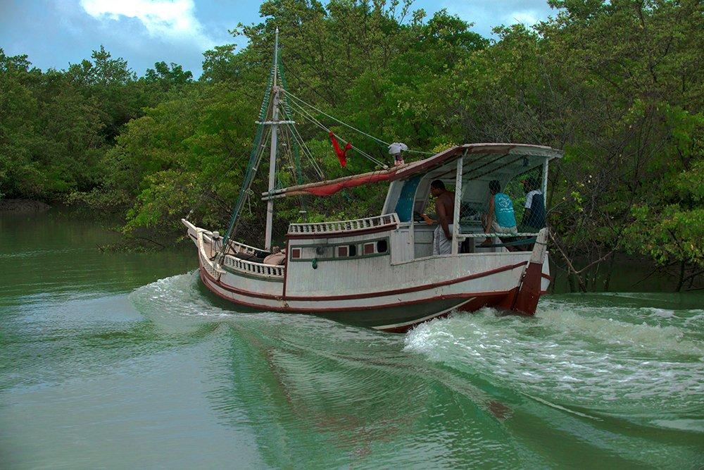 Resex de Cururupu, imagem de bote-proa de risco navegando